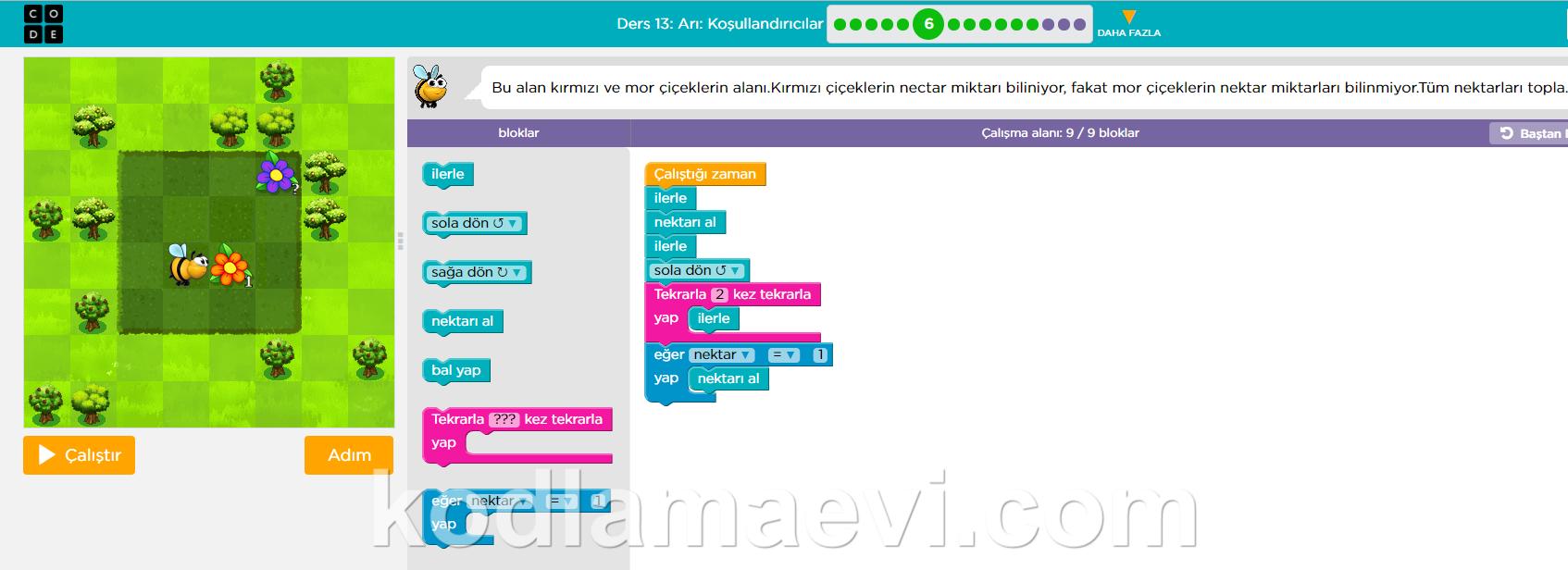 code org kurs 2